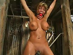 Ava Devine Bound,Whipped,Forced To..