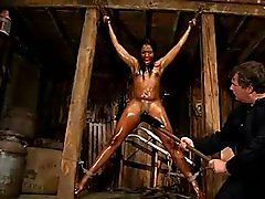 Sydnee Capri Bound,Oiled,Whipped,..