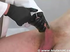 Penis Insertion  