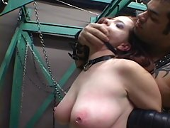 Submissive Sluts 15-1 