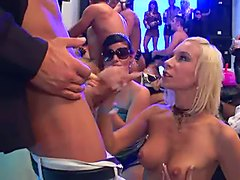 Sex Party With Horny