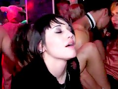 Sinful sex-party with slutty chicks